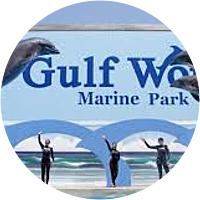 Gulf World Marine Park