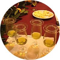 Olive Oil Tour & Carmona