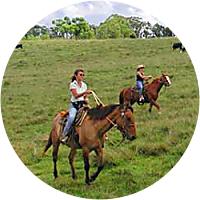 Horseback Riding- 3 Hour Waterfall Tour