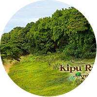 Kipu Ranch Adventures: Ultimate Ranch ATV Tour