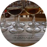 Boutari winery tour