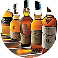 Scotch Tour & Tasting