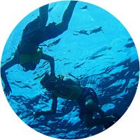 Snorkeling Cruise
