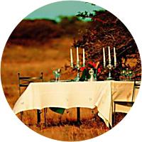 Dinner in the Bush - February 7th