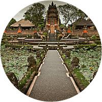 Tour the Ubud Monkey Forest