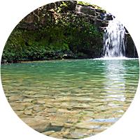 Maui Rainforest, Waterfall Hike