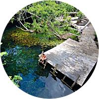 Trip to Gran Cenote in Tulum