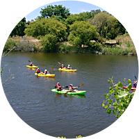 Kayaking on Napa River