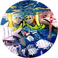 Snorkeling/Scuba Diving in Cozumel