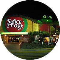 Night at Senor Frogs