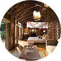 Lake Manyara Tree Lodge Stay (1 night)