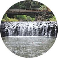 Malanda Falls Campsite (3 nights)