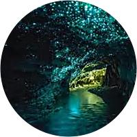 Tour of Waitomo Glowworm Caves