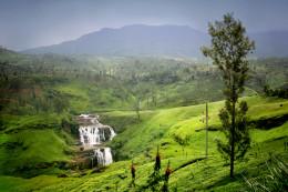 Honeymoon in Sri Lanka & India
