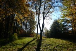 Honeymoon in Catskills