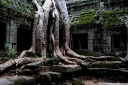 Honeymoon in Thailand, Vietnam, and Cambodia