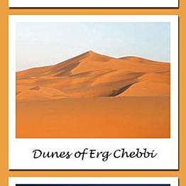Camel trek through Sahara