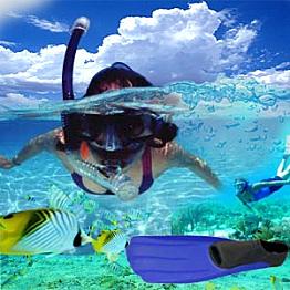Boogie Board & Snorkel Rental
