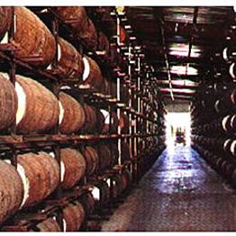 Rum Tour