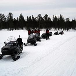 Snowmobile Safari