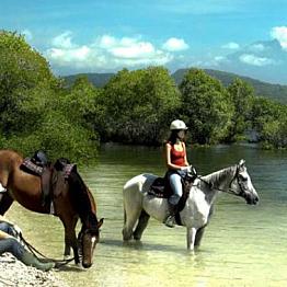 Horsebackriding at Bali National Park