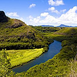 Wailua River Kayak Tour