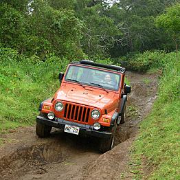 Car Rental in Kauai