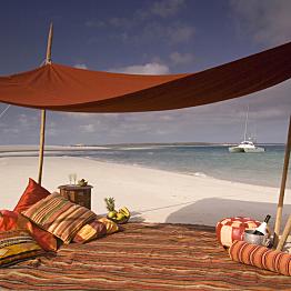 Picnic on a Deserted Beach
