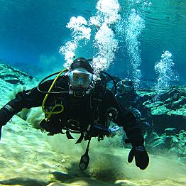 Diving Under the Midnight Sun