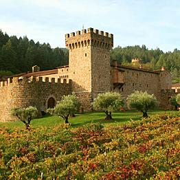 Vineyard Tour at the Castello di Amorosa