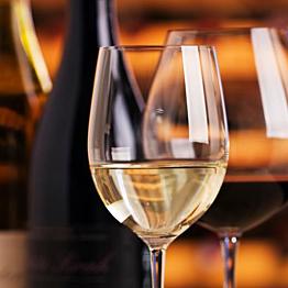 Wine tasting in Dubrovnik