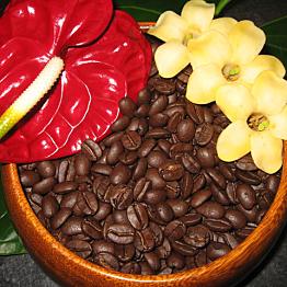 Cup of Kona coffee