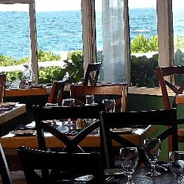 Dinner at Mediterranean Gourmet