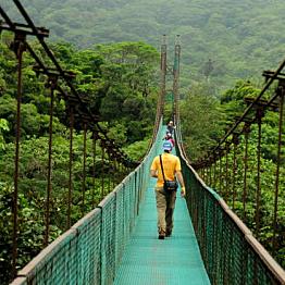 Ziplining through the Monteverde Cloud Forest