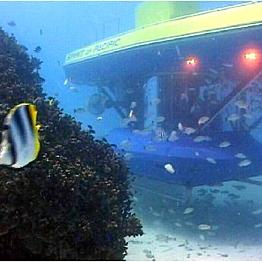 Submarine Excursion