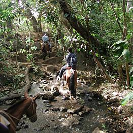 Rincon De La  Vieja National Park Tour and Horseback Ride