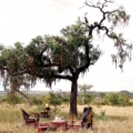 Bush Breakfast & Adventure Picnic