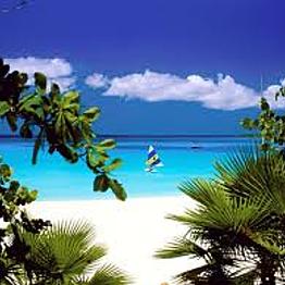An Island Honeymoon
