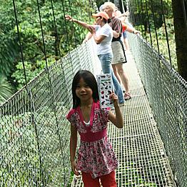 Arenal Hanging Bridges Tour