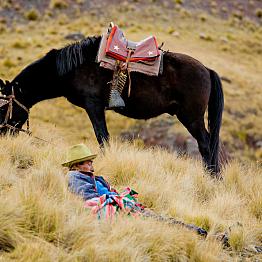 Sherpa service