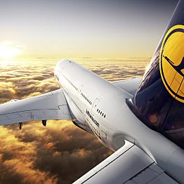 Flight (Returning): Back to Reality