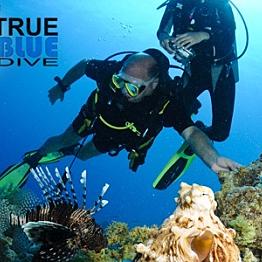Scuba Diving in Sydney