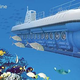 Atlantis Premium Submarine Tour