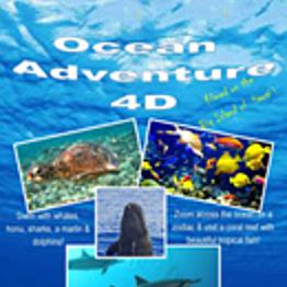 4D Adventure Ride