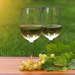 Wine Tasting in Cinque Terre