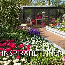 Visit to Keukenhof Gardens