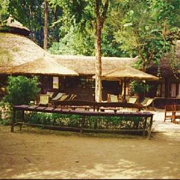 Jungle cottage in Chitwan