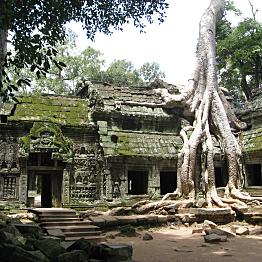 Day at Angkor Wat