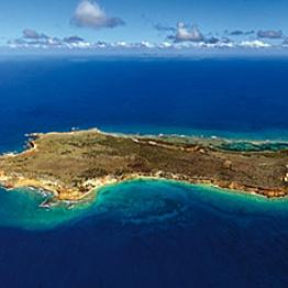 Catamaran Day Trip to the Island of Tintamarre