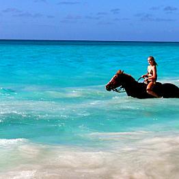 Hawaii by Horseback